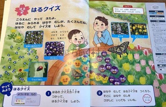 Z会入学準備 季節や自然の学び